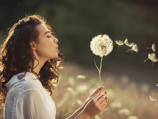 Młoda kobieta na polu dmuchająca dmuchawca, wokół którego unoszą się pyłki, alergen, alergia na pyłki traw